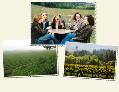 Sip Swirl and Taste Wine Country